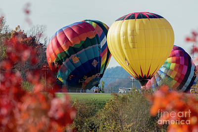 Photograph - Hot Air Balloons Lift Off by Dan Friend