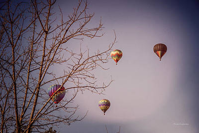 Photograph - Hot Air Balloons On The Rise by Mick Anderson