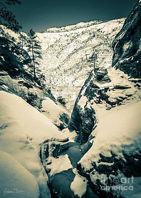 Photograph - Hot And Cold, Tonal by Adam Morsa