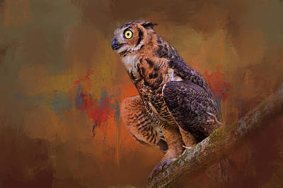 Photograph - Hot August Night Owl Art by Jai Johnson