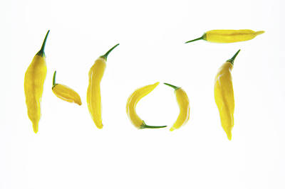 Chillie Photograph - Hot Chillies by Helen Northcott