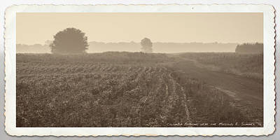 Photograph - Hot, Hazy Summer Morning In The Mississippi River Bottoms by Garry McMichael