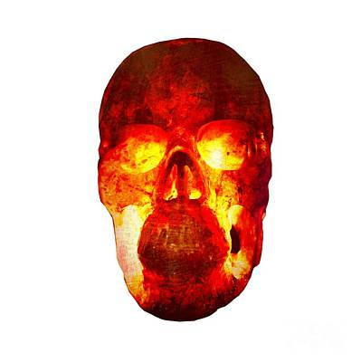Photograph - Hot Headed Skull On Transparent Background by Terri Waters