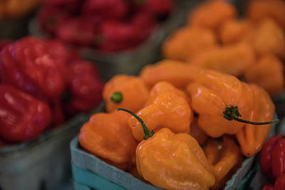Photograph - Hot Hot Peppers by Randy Walton