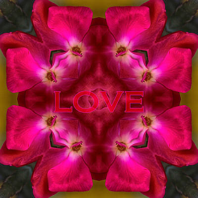 Photograph - Hot Love by Mary Buck