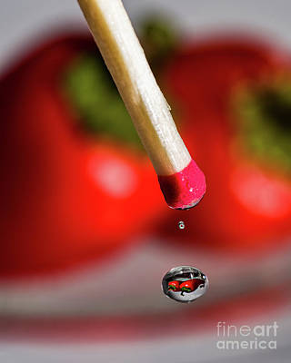 Photograph - Hot Pepper Drops by Alissa Beth Photography