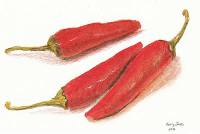 Drawing - Hot Peppers by Barry Jones