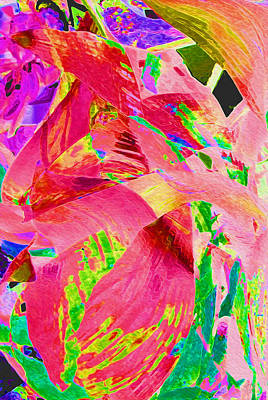 Photograph - Hot Pink Leaf Abstract by Stephanie Grant