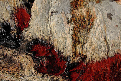 Photograph - Hot Rock by Debbie Oppermann