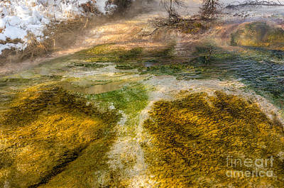 Photograph - Hot Springs Pool by Sue Smith