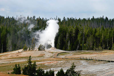 Springs Photograph - Hot Steam Dog Yellowstone National Park Wy by Christine Till
