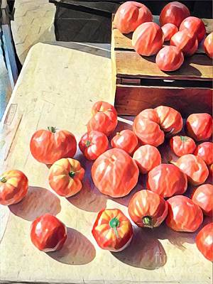 Photograph - Hot Tomatoes - A Sunny Day On The Farm by Miriam Danar