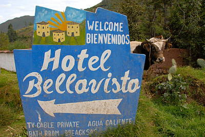 Hotel Bellavisto Art Print by Lynn Friedman