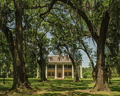 Photograph - Houmas  House Plantation And Gardens by Allen Sheffield