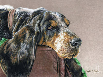 Bass Drawing - Hound Dog by Sarah Batalka