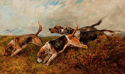 Sniffing Painting - Hounds On The Scent by John Emms