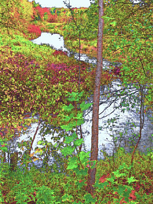 Housatonic River 2 - New England Art Print by Steve Ohlsen