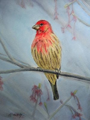 Painting - House Finch by Marna Edwards Flavell