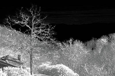 Photograph - House In Winterland by Dennis Baswell