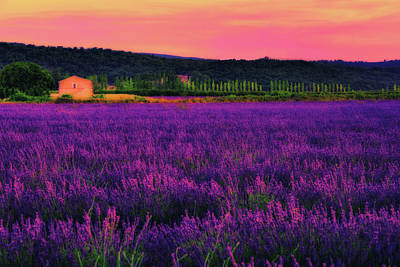 South France Photograph - House Of Dream by Midori Chan