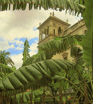 Photograph - House Of Spain by JAMART Photography