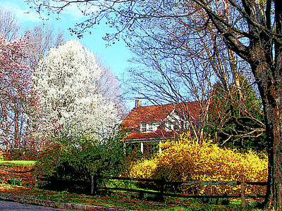 Forsythia Photograph - House On The Hill In Spring by Susan Savad