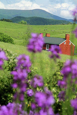 Photograph - House On Virginia's Hills by Emanuel Tanjala