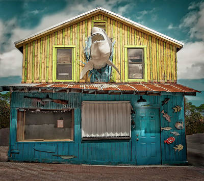 Photograph - House Shark by Jerry Golab