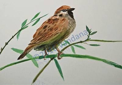 House Sparrow Original