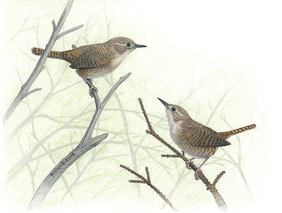 House Wrens Print by Kalen Malueg