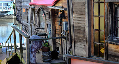 Sausalito Photograph - Houseboat Cat by Jeremy Rickman