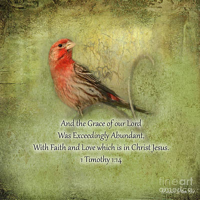 Photograph - Housefinch With Verse - Square by Debbie Portwood