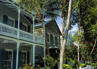 Houses In The Palms  Art Print by Dale Wilson