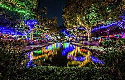 Photograph - Houston Zoo Christmas Lights by Micah Goff