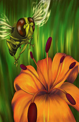Hover Fly Art Print by Tom Wrenn