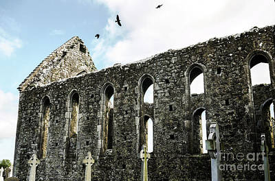Photograph - Birds Hovering Over Abbey by Lexa Harpell