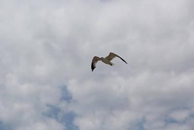 Hovering In The Sky Original