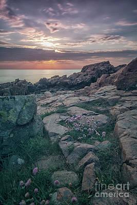 Photograph - Hovs Hallar Coastal Region by Antony McAulay