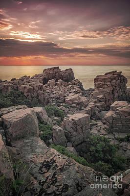 Red Roses - Hovs Hallar Craggy Rocks by Antony McAulay