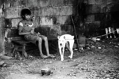 Photograph - How Do Dogs Feel by Jez C Self