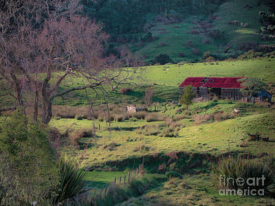How Green Is My Valley Art Print by Karen Lewis