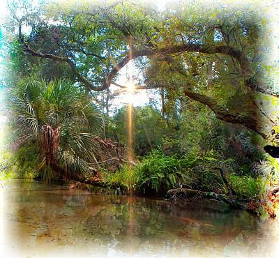 Photograph - How I See Florida by Sheri McLeroy