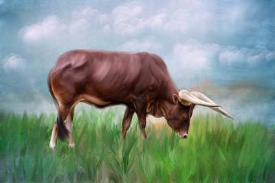 Mixed Media - How Now Brown Cow by Mary Timman