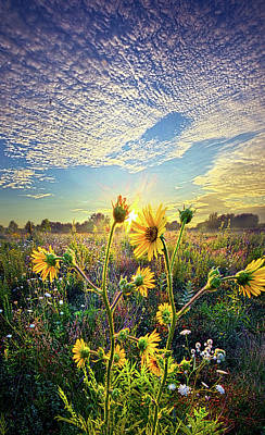 Hope Photograph - How The Story Goes by Phil Koch