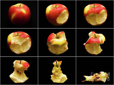 How To Eat An Apple In 9 Easy Steps Art Print