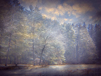 Photograph - Howe State Park In Winter by Michele A Loftus