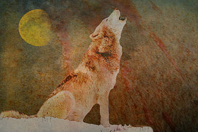 Photograph - Howl Of The Wolf by Ericamaxine Price