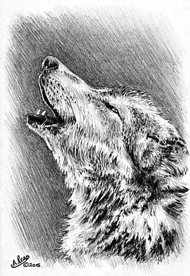 North American Wildlife Drawing - Howling Wolf by Andrew Read