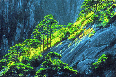Mixed Media - Huangshan Pines by Dennis Cox Photo Explorer