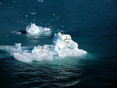 Photograph - Hubbard Glacier Icebergs by Connie Fox